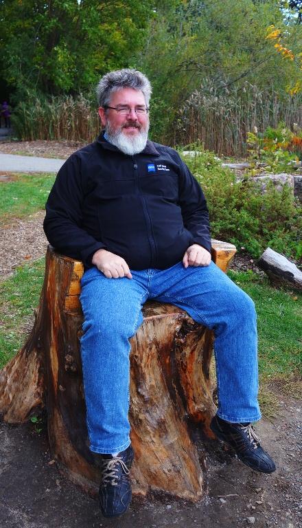 High Park, Tree Chair, Toronto, Canada
