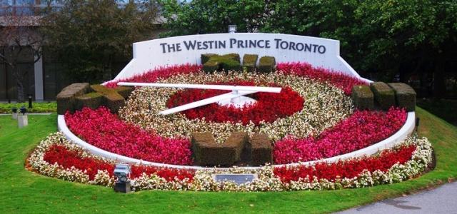 Westin Prince Toronto, Flower Clock, Flowers, Clocks
