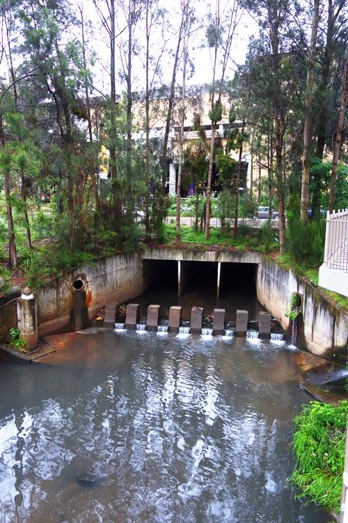 Australian Creek, Meriton, North Ryde, Macquarie Centre