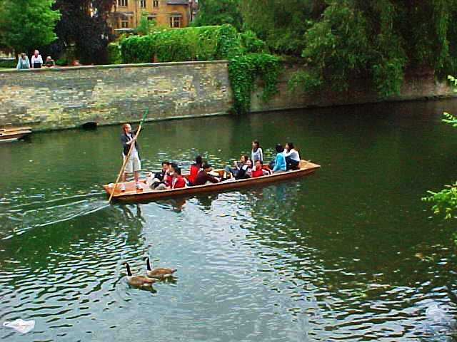 Punter, Punt, Punting, Cambridge, Boating, Cam River