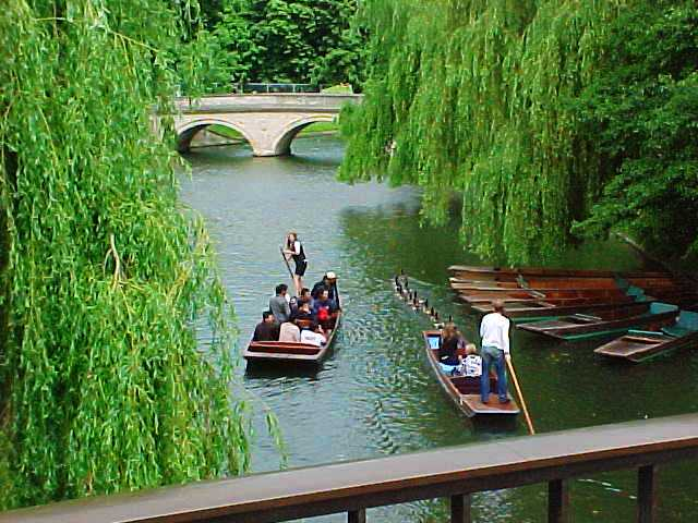 River Cam, Punting, Punt, Cambridge, Cambridge University