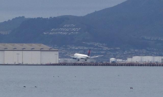 SFO, Plane Spotting, Delta, Landing Plane
