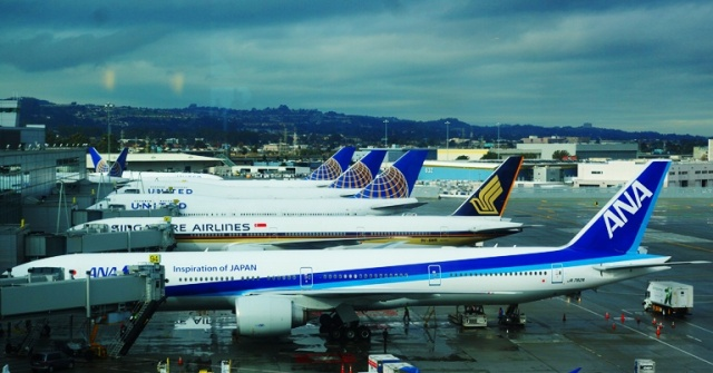 San Francisco International Airport, SFO, United Airlines, ANA, Row of Planes
