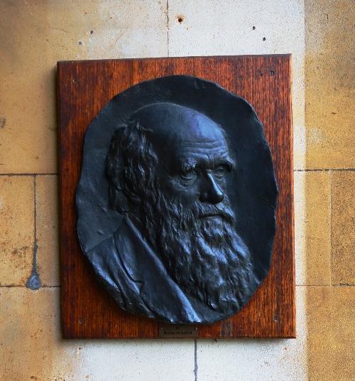 Darwin, Milton, Christ's College, Cambridge University