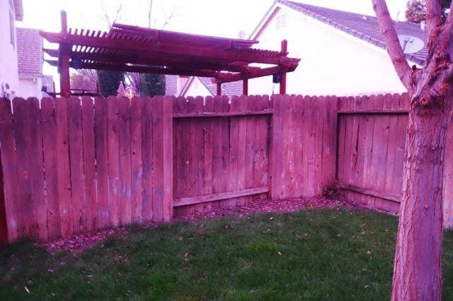 Back Yard Fence, Yard Work, Clean Up