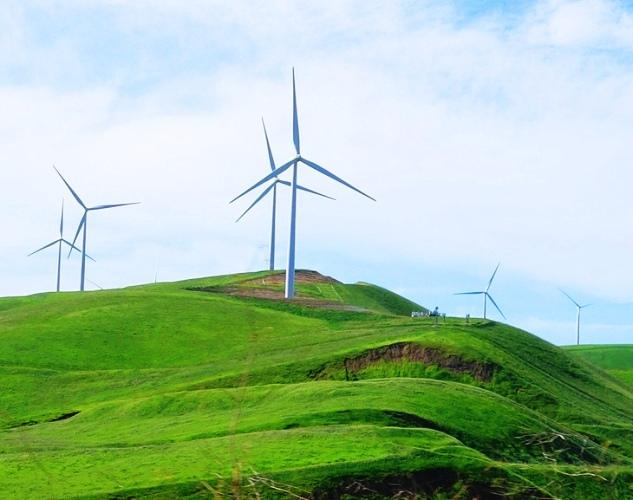 Altamont, California, Windmills, Spring Rains, Winter Rains, Green Hills