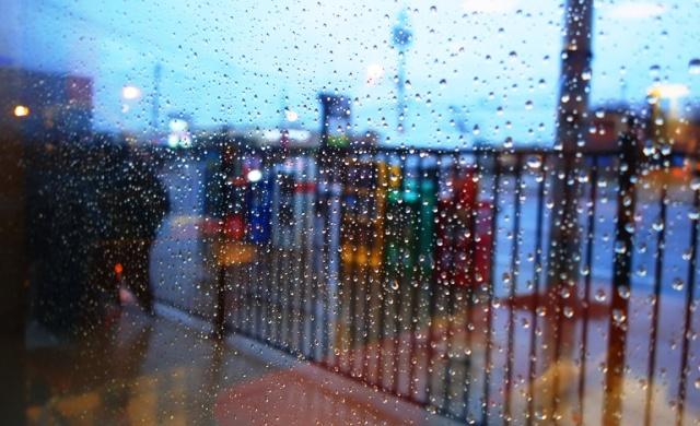 Rainy Day, Tim Hortons, Toronto, Canada