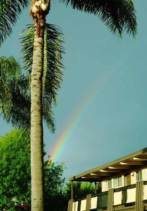 Rainbow, Rain, Bay Area, Drought Buster, California