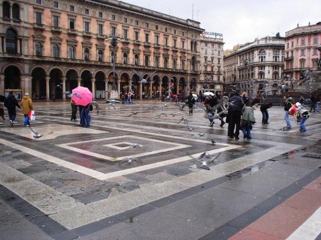 Pigeons, Milan, Duomo, public square