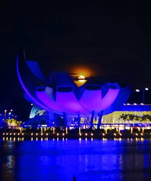 ArtScience Museum, Singapore, Sands Resort, Marina Bay