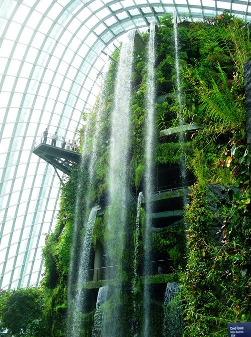 Cloud Forest, Gardens by the Bay, Singapore, Waterfalls