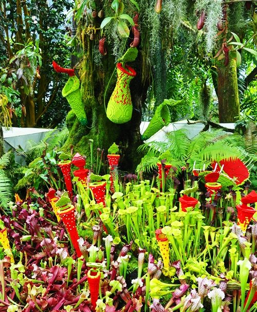Lego Flowers, Singapore, Gardens by the Bay, Cloud Forest, Lego Flowers
