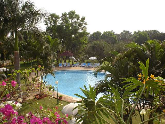 Bangalore, India, Swimming Pool, Tropical