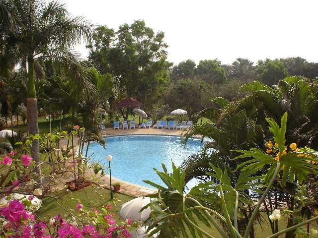 Bangalore, India, Swimming Pool, Tropical