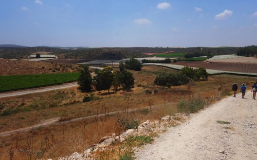 Last Walk Down, Tel Lachish, archaeology, Lachish