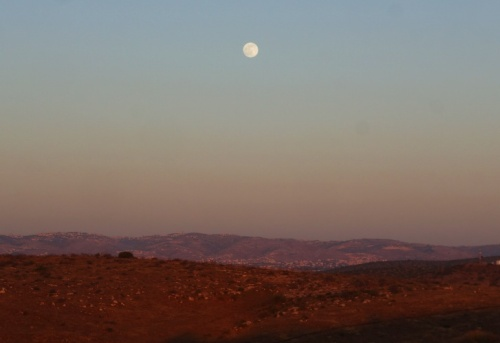 Shephelah, lachish, Judean hills, sundown, archaeological dig