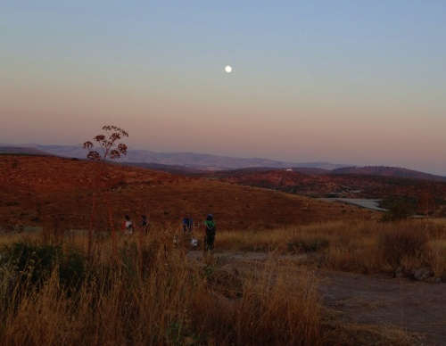 Shephelah, Lachish, Archaeological Dig, Full Moon