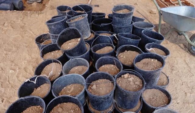 Buckets, soil, archaeology, excavation, tel lachish, test pit