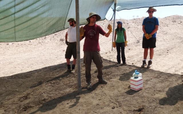 Square, Archaeology, Area supervisor, squares, dig