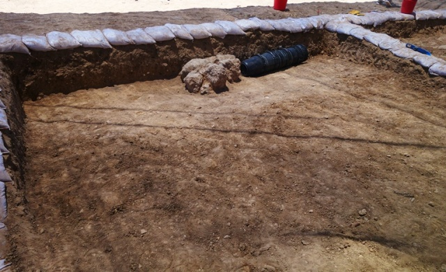 Square Day 2, Tel Lachish, Archaeology, stones