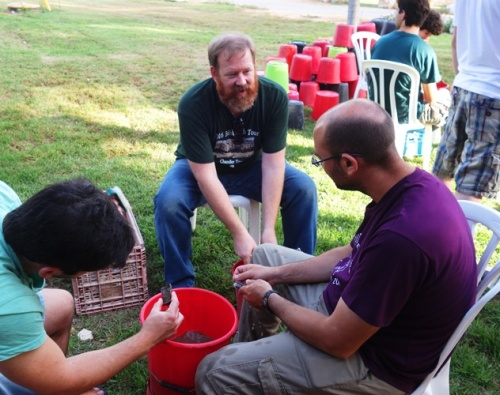 Pottery Washing, Pottery, Archaeological Dig, Pottery Reading