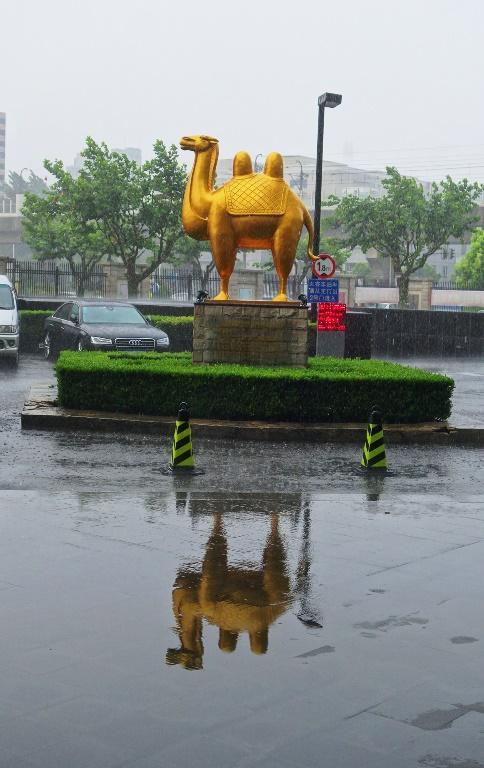 Crowne Plaza Pudong, Shanghai, Rain, Reflection