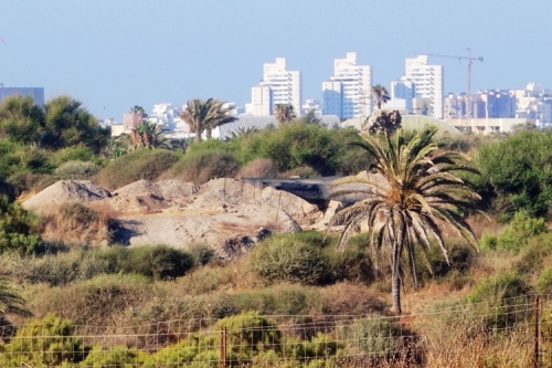 Ashkelon, Leon Levy Expedition, Modern City vs. Dig Site, Philistine Cemetery