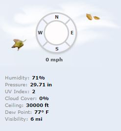 High Humidity, Shanghai, Summer Weather, RealFeel Temps, AccuWeather