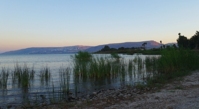 Beach, Sea of Galilee, seashore