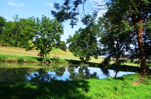 German Countryside, Jena, Germany, Long walk, pond