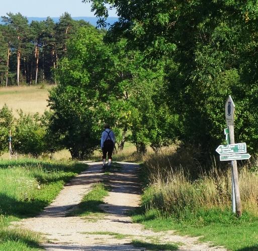 Lederhosen, Suspenders, Walk in the countryside