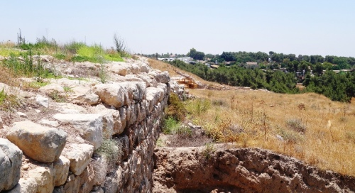 Tel Lachish, Archaeology, Gate Area, Latrine, Palace