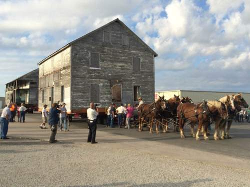 Amish House, 8 horse hitch, Arthur Illinois, Tom Vance, Moving Amish House, Belgian Horses, Amish Horse, Tom Vance