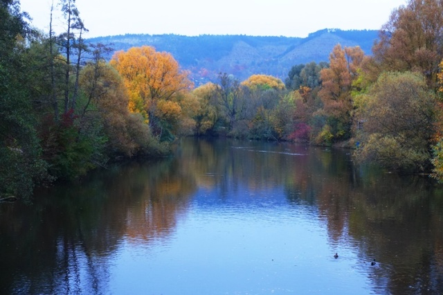Saale River, Jena, Autumn, Colorful trees, dusk
