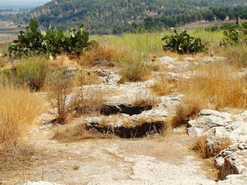 Jezreel, King Ahab, Ruins, Archaeology, Jezebel, Elijah