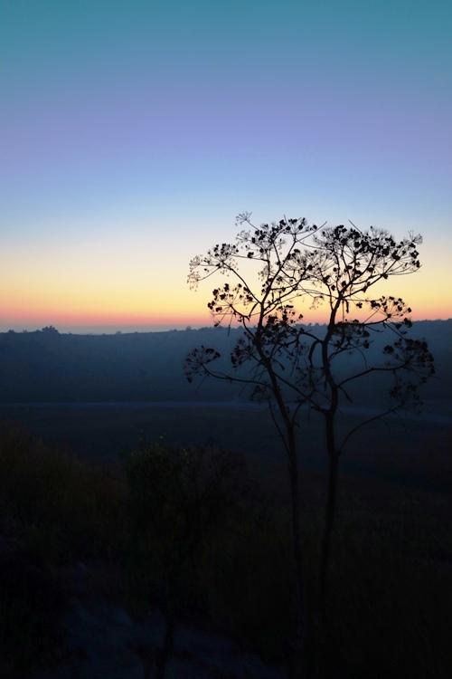 Silhouettes, Tel Lachish, Archaeology, Lachish