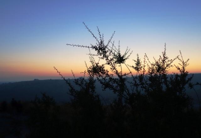 Silhouette, Tel Lachish, Archaeology, Morning Climb
