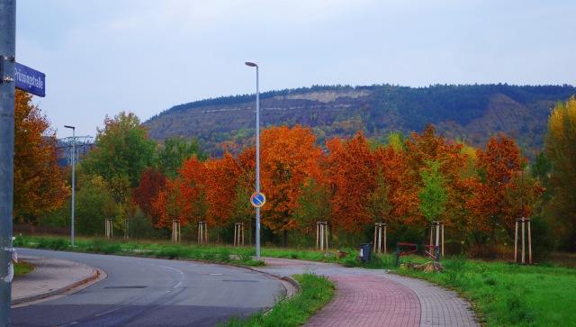 Fall Color, Jena, Germany, Goschwitz, Walk to Work