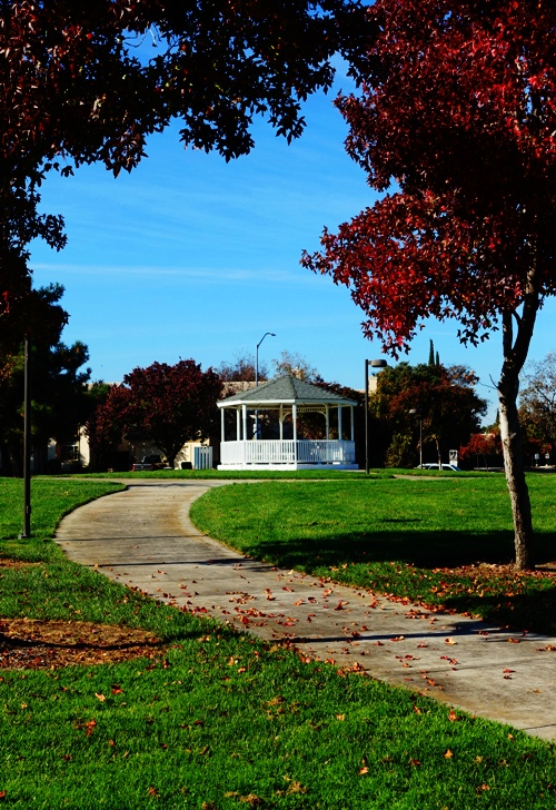 Park, Gazebo, Fall Day, Beautiful walk, exercise, Vote Walk