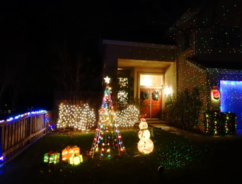 Christmas decorations, lights, holiday decorations