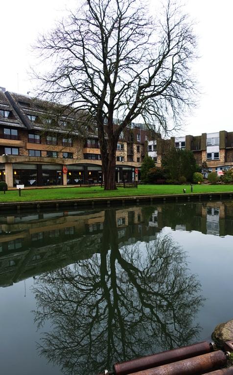River Cam, Cambridge, England, Reflections, Coe Fen