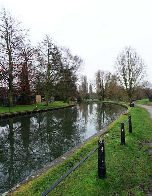 Trees reflecting, river cam, Cambridge, Coe Fen