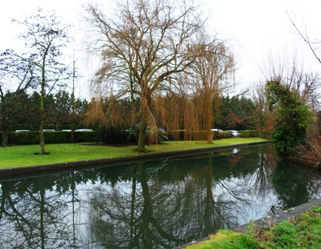 River Cam, Cambridge, UK, Trees, reflections