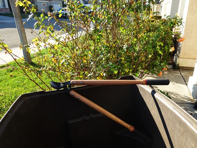 Big Empty Backyard : Here is the empty yard waste container and my large clippers By the