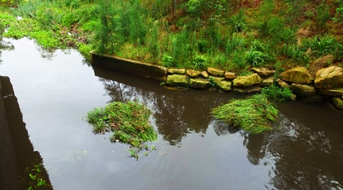 North Ryde, Shrimpton Creek, Rainy Day, Australia