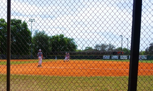 Temple Terrace, Florida, Baseball
