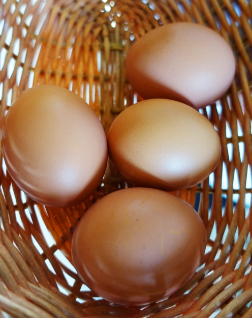 Egg Basket, eggs, woven basket, brown eggs, country eggs