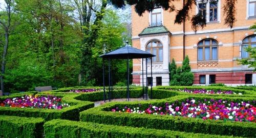 Tulip garden, aalen germany, spring
