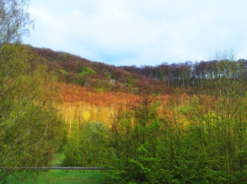 Nature, Hills of Germany, Oberkochen