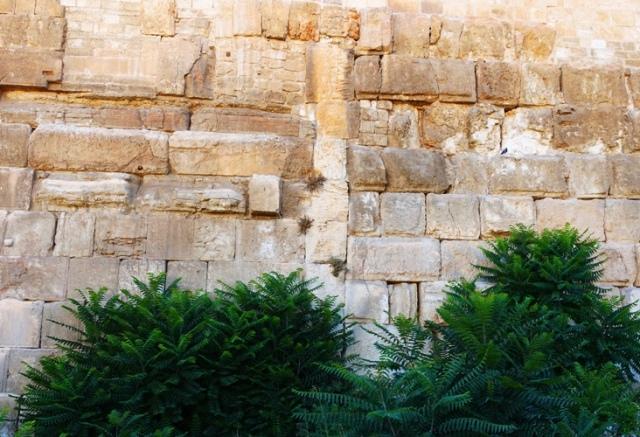 Seam in Temple Mount Wall, Jerusalem